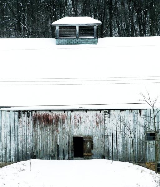 barn seen against the woods
