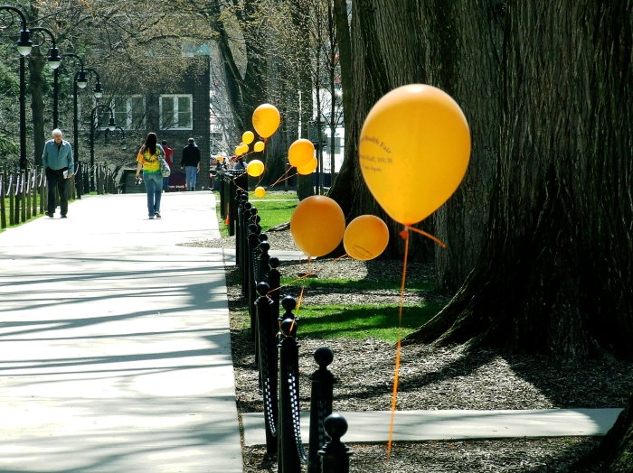 balloons on the main mall of Penn State's University Park campus