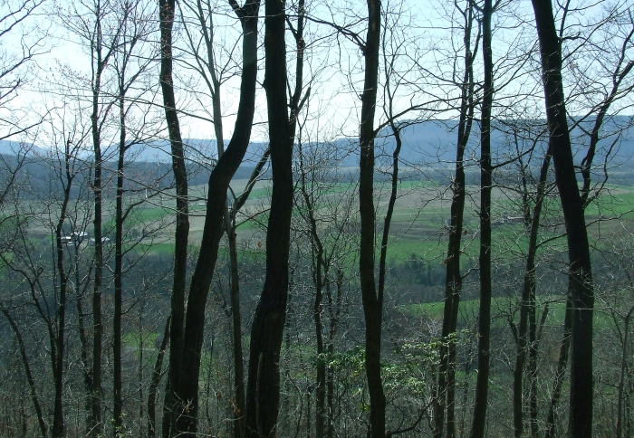 view of the north end of Sinking Valley from Brush Mountain