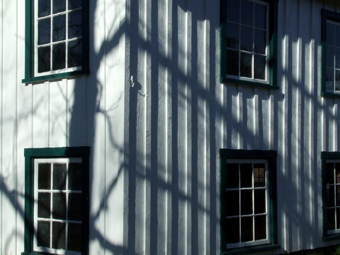henhouse shadows