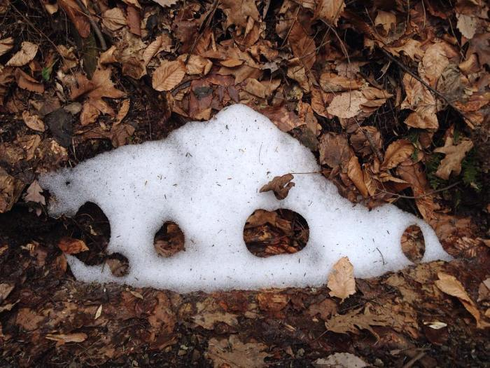 mountain-shaped patch of snow with round holes through to the leaves below