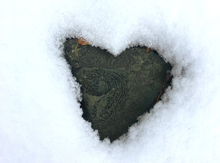 snow melted in a heart shape over a lichen-covered rock