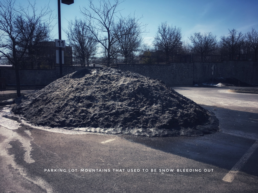 A large mound of plowed snow in a parking lot, black with dirt.