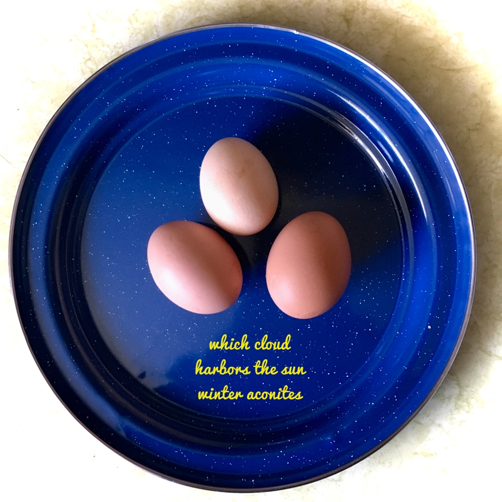 Three uncracked brown eggs in the middle of a large blue plate