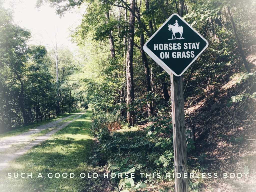 A wide trail with a sign that says HORSES STAY ON GRASS